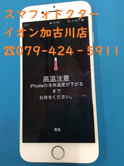 IMG_1266.JPG
